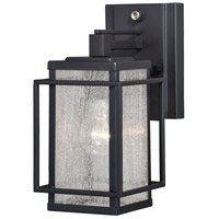 Vaxcel T0466 Hyde Park 1 Light 11 inch Espresso Bronze Outdoor Wall