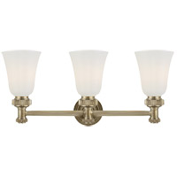 E. F. Chapman Ruhlmann 3 Light 24 inch Antique Nickel Bath Wall Light