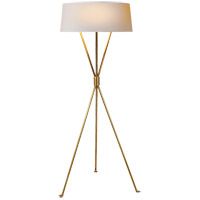 Visual Comfort Suzanne Kasler Thornton 54 inch 25 watt Hand-Rubbed Antique Brass Decorative Floor Lamp Portable Light SK1004HAB-NP - Open Box