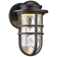 Steampunk LED 10 inch Bronze Indoor/Outdoor Wall Sconce