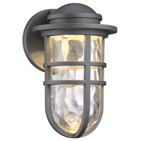 Steampunk LED 10 inch Graphite Indoor/Outdoor Wall Sconce