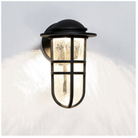 WAC Lighting WS-W24513-BZ Steampunk LED 8 inch Bronze Wall Light alternative photo thumbnail