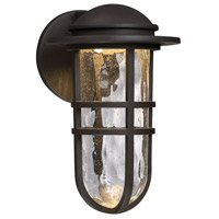 Steampunk LED 8 inch Bronze Wall Light