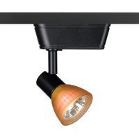 WAC Lighting HHT-8141-AM/BK HT-814 1 Light 120V Black Track Lighting Ceiling Light