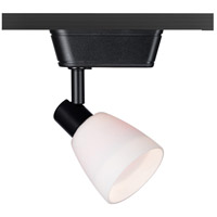 WAC Lighting HHT-8144-WT/BK HT-814 1 Light 120V Black Track Lighting Ceiling Light