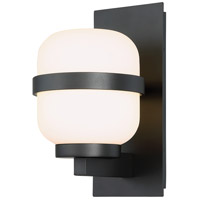 Gaia LED 12 inch Black Outdoor Wall Light, dweLED