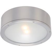 WAC Lighting FM-W2612-AL Tube LED 12 inch Brushed Aluminum Indoor/Outdoor Flush Mount