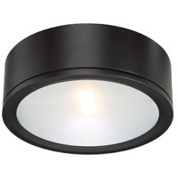 WAC Lighting FM-W2612-BK Tube LED 12 inch Black Indoor/Outdoor Flush Mount