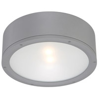 WAC Lighting FM-W2612-GH Tube LED 12 inch Graphite Indoor/Outdoor Flush Mount