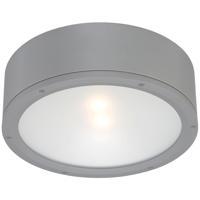 WAC Lighting FM-W2612-GH Tube LED 12 inch Graphite Indoor/Outdoor Flush Mount