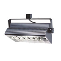 WAC Lighting H Series Cfl Wall Washer 2X18W in Black HTK-W218E-HS-BK