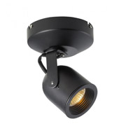 Spot 808 Black 50 watt 1 Light Spot Light in Halogen
