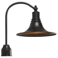Dark Sky Kingston 1 Light 20 inch Bronze Outdoor Post Light