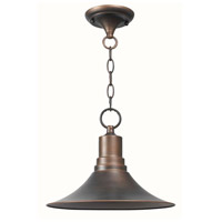 Dark Sky Kingston 1 Light 13 inch Antique Copper Outdoor Pendant