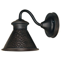 Dark Sky Essen 1 Light 9 inch Bronze Outdoor Wall Lamp