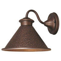 Dark Sky Essen 1 Light 8 inch Antique Copper Outdoor Wall Lamp
