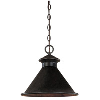 Dark Sky Essen 1 Light 12 inch Bronze Outdoor Pendant
