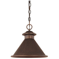 Dark Sky Essen 1 Light 12 inch Antique Copper Outdoor Pendant