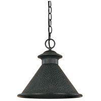 Dark Sky Essen 1 Light 12 inch Rust Outdoor Pendant