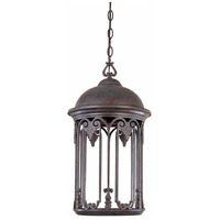 Dark Sky Lucca 1 Light 11 inch Old Bronze Outdoor Hanging Light