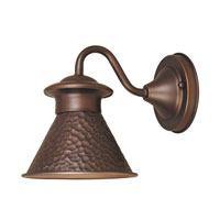 World Import Designs Dark Sky Essen 1 Light Outdoor Wall Lantern in Antique Copper 9002S-86