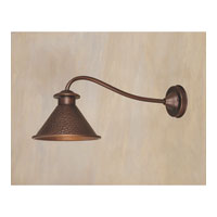 World Import Designs Dark Sky Essen 1 Light Outdoor Wall Lantern in Antique Copper 9003-86