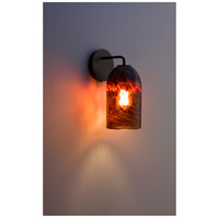 Rose Modern 1 Light 6 inch Bronze Wall Sconce Wall Light in Clear Dark Amber