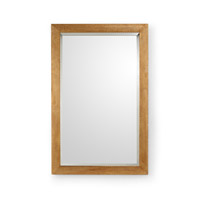 CM 55 X 35 inch Mirror Home Decor