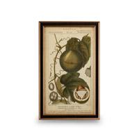 Wildwood Lamps 386171 CM Art Print