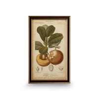 Wildwood Lamps 386172 CM Art Print