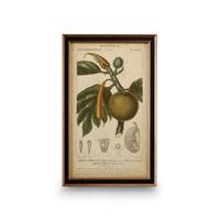 Wildwood Lamps 386173 CM Art Print