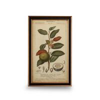 Wildwood Lamps 386174 CM Art Print