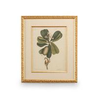 Wildwood Lamps 386177 CM Art Print