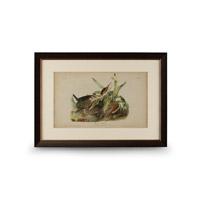 Wildwood Lamps 386233 CM Art Print