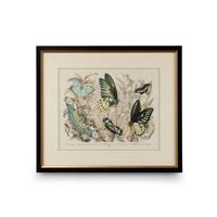 Wildwood Lamps 386234 CM Art Print