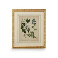 Wildwood Lamps 386236 CM Art Print
