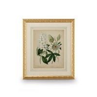 Wildwood Lamps 386237 CM Art Print