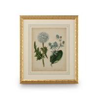 Wildwood Lamps 386238 CM Art Print