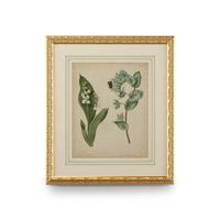 Wildwood Lamps 386239 CM Art Print