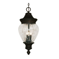 Z-Lite Devonshire 3 Light Outdoor Chain Light in Black Gold 1176CH-BG