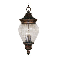 Z-Lite Devonshire 3 Light Outdoor Chain Light in Weathered Bronze 1176CH-WB