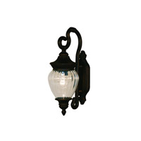 Z-Lite Devonshire 1 Light Outdoor Wall Light in Black Gold 1176S-BG