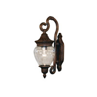 Z-Lite Devonshire 1 Light Outdoor Wall Light in Weathered Bronze 1176S-WB