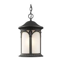 Z-Lite Hampton 1 Light Outdoor Chain Light in Black 2021CH-BK