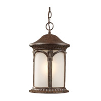 Z-Lite Hampton 1 Light Outdoor Chain Light in Weathered Bronze 2021CH-WB