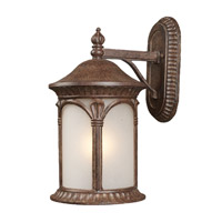 Z-Lite Hampton 1 Light Outdoor Wall Light in Weathered Bronze 2021M-WB