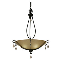 Z-Lite Provence 1 Light Pendant in Black 306P