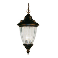 z-lite-lighting-waterloo-outdoor-pendants-chandeliers-504ch-bg