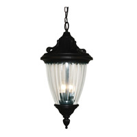 Z-Lite Waterloo 3 Light Outdoor Chain Light in Black 504CH-BK
