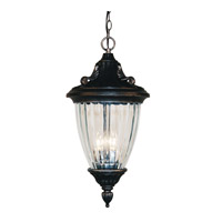 Z-Lite Waterloo 3 Light Outdoor Chain Light in Black Silver 504CH-BS
